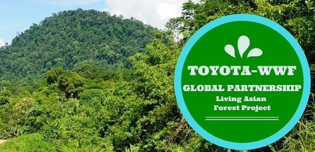 Toyota ve WWF �S�f�r Karbon� ��in ��birli�i Yapacak